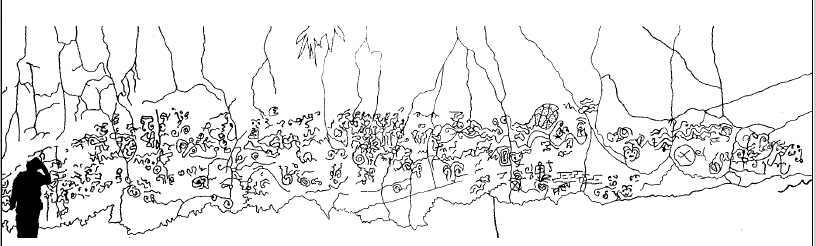 Arte rupestre Pusharo Selva amazonica Peru